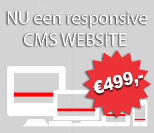 cms website v.a. 499,-